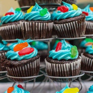 Birthday Cupcakes Baked Good Pricing | Holland Cakery 'n' Sweets